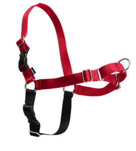 Having two different colors helps with attaching this harness together! Picture courtesy of PetSafe.net
